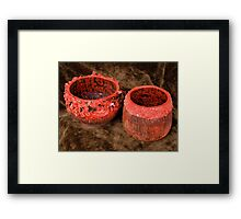 Red Duo Framed Print