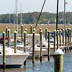 Boat Parking by Cynthia48