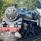 Steam train NYMR  by Kit347