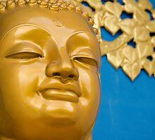 Buddha Gold by HelenPadarin