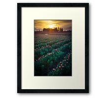 Mount Vernon Morning Framed Print