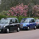 Three London cabs by Segalili