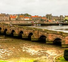 Berwick Bridge by Tom Gomez