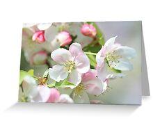 Blooming Softly Greeting Card