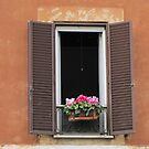 Roman Window #1, March 2012 by kgarrahan