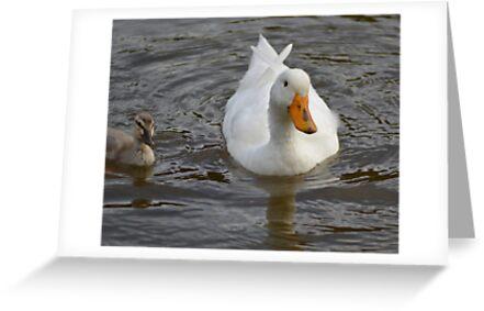 Mummy & Bubby Duck by TheaShutterbug