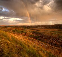 Rainbow Field-Portrait by Bob Larson