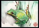 Green Tree Frog - watercolor and prisma pencil painting by Rebecca Rees