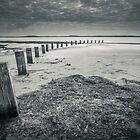 Sandy Point by Andrew Bradsworth