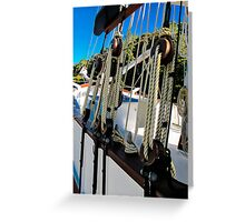tied down Greeting Card