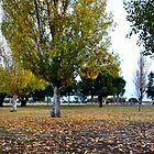 Autumn in Busselton by Jodi Kneebone