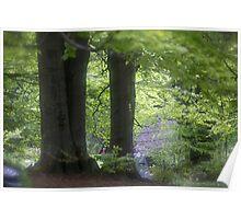 ❤‿❤  . Nostalgic green dream. Welcome to Lemkivshchyna (Ukrainian: Лeмкiвщина, Lemko: Lemkovyna (Лeмкoвина),: (Łemkowszczyzna). Tribute to Andy Warhol ! Featured a World of EOS. Fav: 3 Views: 697 . Poster