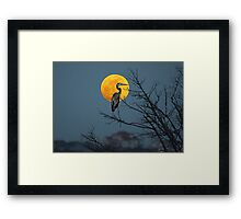 Super Moon and Great Blue Heron Framed Print