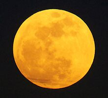 My Shot of the Super Moon On May 5th 2012 by imagetj