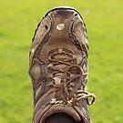 Old Brown Shoe by eggnog