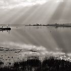Exe Estuary near Turf Locks Hotel by peteton