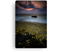 Glittering Barnacles! Canvas Print