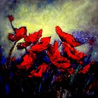 More poppies by Ivana Pinaffo