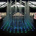 The Water Show by Debra Fedchin
