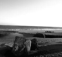 Shadows in the sand by Zozzy-zebra