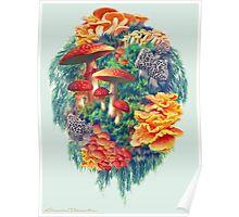 Fungus Amongus Poster