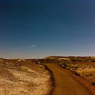 That Time I Went To The Petrified Forest by melanie1313