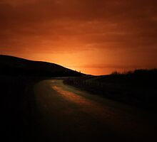 DRIVING INTO THE SUNSET by leonie7