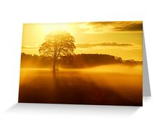 """""""THE DAY BEGINS"""" Greeting Card"""
