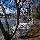 Kangaroo Point by the river Brisbane Australia by PhotoJoJo
