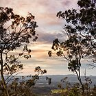 Lookout Upon Withcott by Tim Swinson