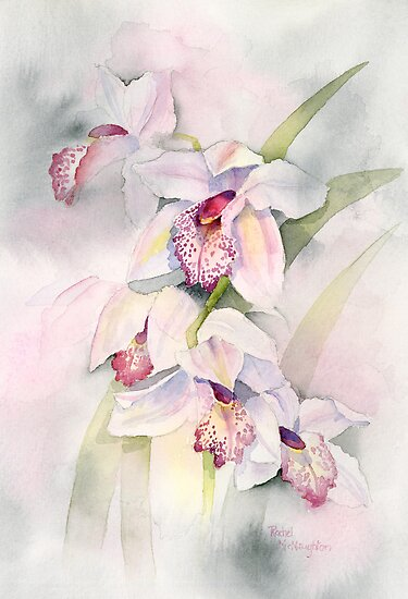 Pale Orchids by artbyrachel