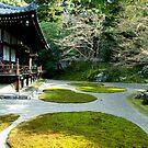 Serene Japanese Temple Garden by skellyfish