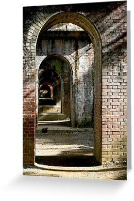 Japan's Brick Aqueducts by skellyfish