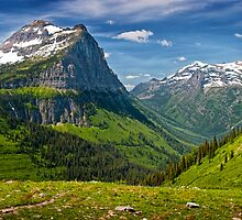 Mountain Range at Glacier National Park by Randall Nyhof