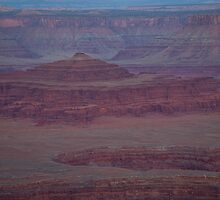 Moon Over Dead Horse Point by Kim Barton