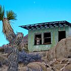 Desert Homestead Cabin by Peter B
