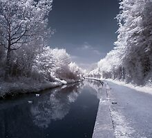 Canal by David Cooper