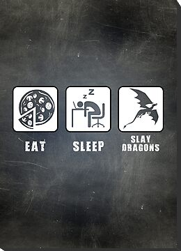Eat, Sleep, Slay Dragons by thehookshot