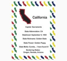 California Information Educational by ValeriesGallery
