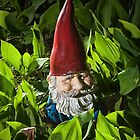 Garden Gnome No 065 by Randall Nyhof
