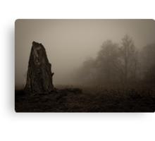 old dead tree  Canvas Print