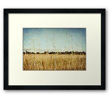 Rustle.... Framed Print