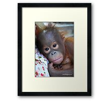 A Beautiful Baby Framed Print