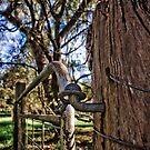 The Gate II by Jane Keats