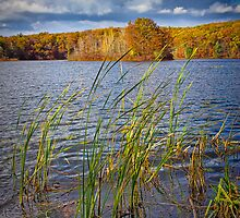 Hall Lake in Autumn No 0086 by Randall Nyhof