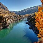 Kawarau Gorge by Christine Smith