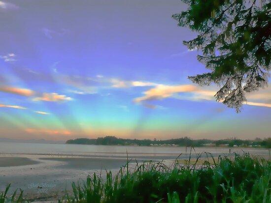 The Sun Setting On Storey's Beach by Gail Bridger