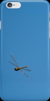 Dragonfly, mid-air by Heather Samsa