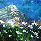 Mountain Daisys by HelenBlair
