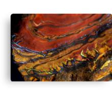 Fire inside Earth Canvas Print